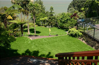 Lawn Care New Zealand